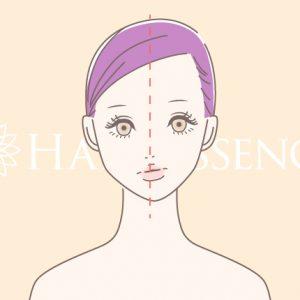 顔のゆがみのことなら阪急西宮北口徒歩2分の美容鍼専門の鍼灸院 ハリエッセンスへ